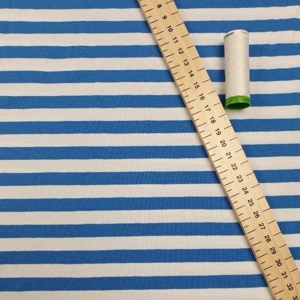 Blue & White Stripe  – Jersey