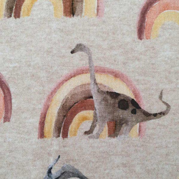 Dinosaur Marl Rainbow – Jersey