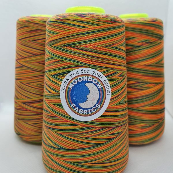 Bright Rainbow Overlocker Thread