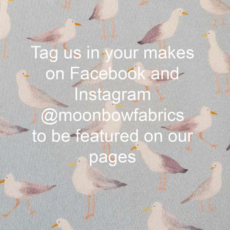 Blue seagulls tag us