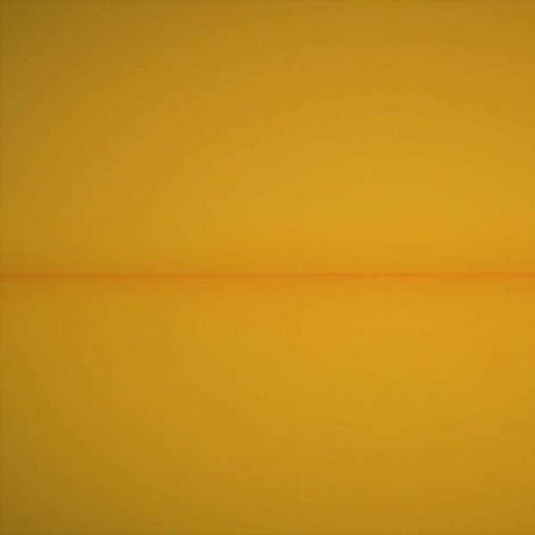 Sunny yellow solid jersey fabric
